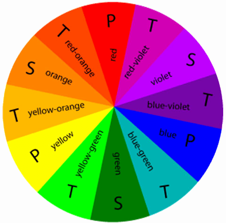 Pick your best one with the help of braces color wheel